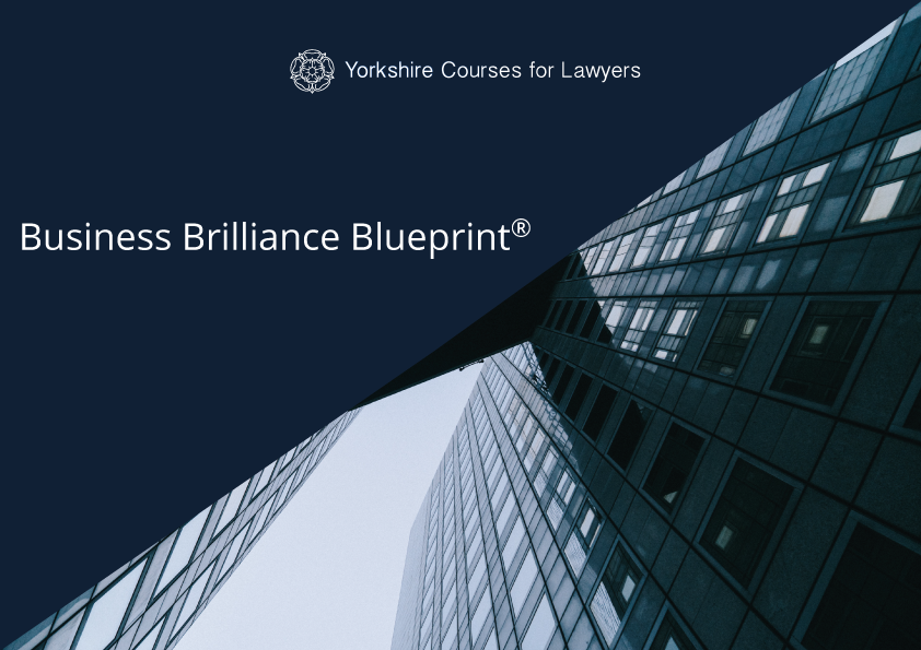 Business Brilliance Blueprint Image